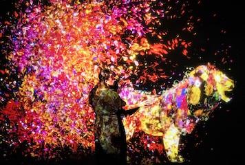 Animals of Flowers Symbiotic_main.jpg